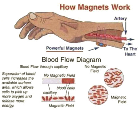 Frequently asked questions about magnetite jewelry products for How does magnetic jewelry work